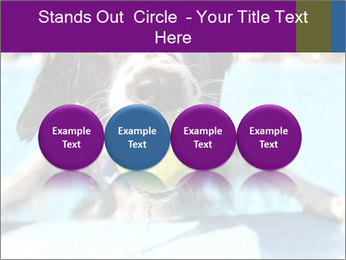 0000077445 PowerPoint Template - Slide 76