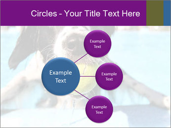 0000077445 PowerPoint Template - Slide 79