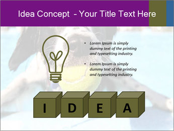 0000077445 PowerPoint Template - Slide 80