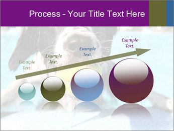 0000077445 PowerPoint Template - Slide 87