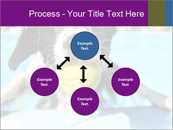 0000077445 PowerPoint Template - Slide 91