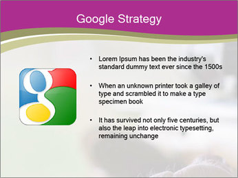 0000077494 PowerPoint Template - Slide 10