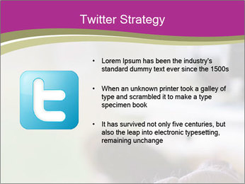 0000077494 PowerPoint Template - Slide 9