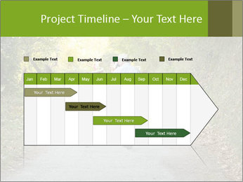 0000077518 PowerPoint Templates - Slide 25