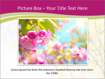 0000077519 PowerPoint Template - Slide 16