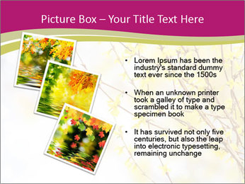 0000077519 PowerPoint Template - Slide 17