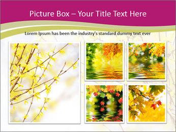 0000077519 PowerPoint Template - Slide 19