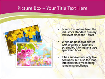 0000077519 PowerPoint Template - Slide 20