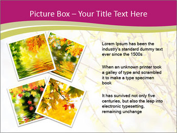 0000077519 PowerPoint Template - Slide 23