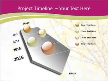 0000077519 PowerPoint Template - Slide 26