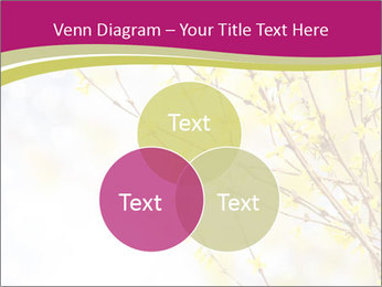 0000077519 PowerPoint Template - Slide 33