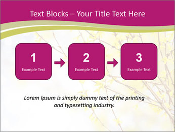 0000077519 PowerPoint Template - Slide 71