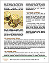 0000077522 Word Template - Page 4