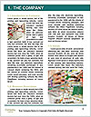 0000077539 Word Template - Page 3