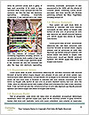 0000077539 Word Template - Page 4