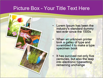 0000077548 PowerPoint Templates - Slide 17