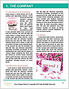 0000077550 Word Template - Page 3