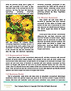 0000077550 Word Templates - Page 4