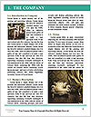 0000077551 Word Template - Page 3
