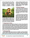 0000077552 Word Templates - Page 4