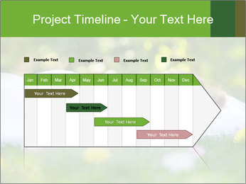 0000077562 PowerPoint Template - Slide 25