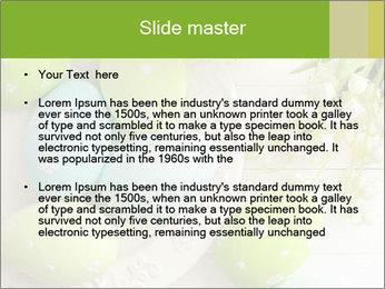 0000077573 PowerPoint Templates - Slide 2