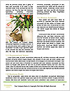 0000077573 Word Templates - Page 4
