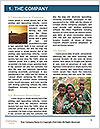 0000077592 Word Template - Page 3