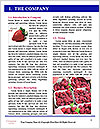 0000077601 Word Template - Page 3