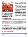 0000077601 Word Templates - Page 4