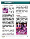 0000077618 Word Template - Page 3