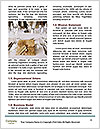 0000077618 Word Template - Page 4