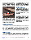 0000077620 Word Template - Page 4