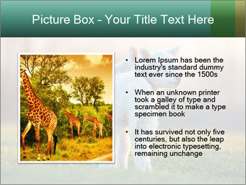 0000077621 PowerPoint Template - Slide 13