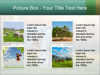 0000077621 PowerPoint Template - Slide 14