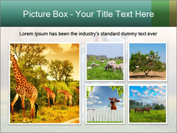 0000077621 PowerPoint Template - Slide 19