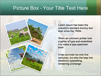 0000077621 PowerPoint Template - Slide 23