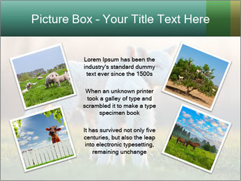 0000077621 PowerPoint Template - Slide 24