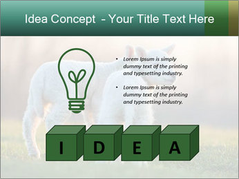 0000077621 PowerPoint Template - Slide 80
