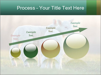 0000077621 PowerPoint Template - Slide 87