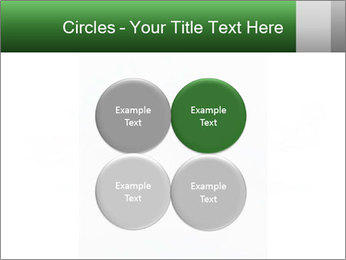 0000077624 PowerPoint Templates - Slide 38