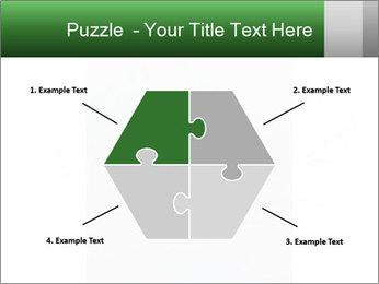 0000077624 PowerPoint Templates - Slide 40