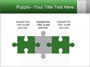 0000077624 PowerPoint Templates - Slide 42