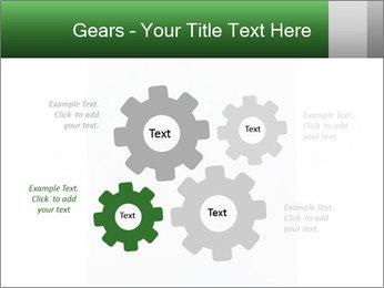 0000077624 PowerPoint Templates - Slide 47