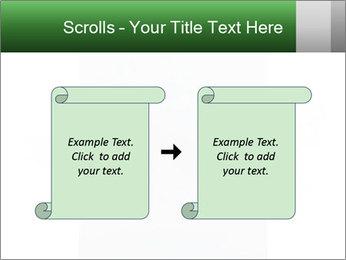 0000077624 PowerPoint Template - Slide 74