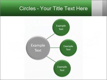 0000077624 PowerPoint Templates - Slide 79