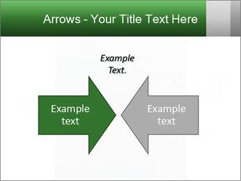 0000077624 PowerPoint Template - Slide 90