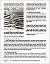 0000077630 Word Template - Page 4