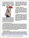 0000077637 Word Template - Page 4