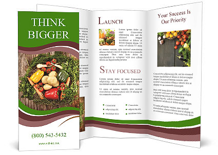 0000077650 Brochure Template